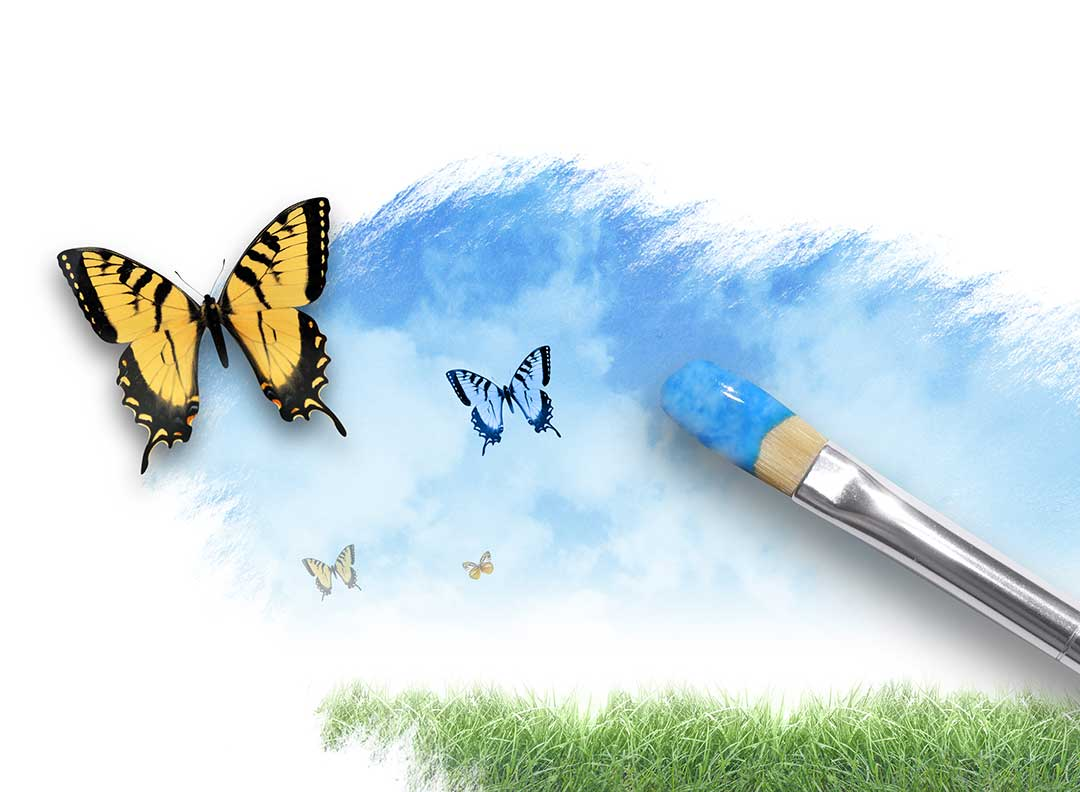 Hospice-butterfly-brushes-event